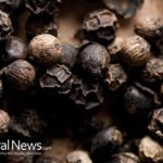 Top 7 Herbal Plants to Combat Flu and Colds