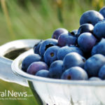 Blueberries: Beautiful Skin Superfood for Anti-Aging Skin Care