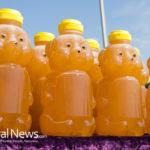 Are You Buying Fake Honey?
