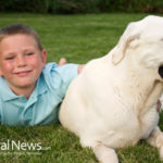 Explaining Pet Loss To Children: Dos And Don'ts