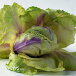 Green Your Plate with Chinese Cabbage