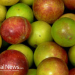Camu Camu: More Vitamin C Than Any Other Food Source On Earth