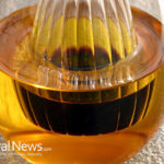 GMOs And Why Say No To Canola Oil! 3 Best Substitute for Canola Oil