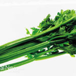 Be A Celery Lover: It Reduces Inflammation, Aids Digestion, Lowers High Blood Pressure and Combats Cancer