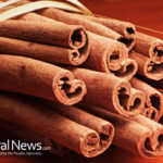 11 Reasons why you should try eating Ceylon cinnamon