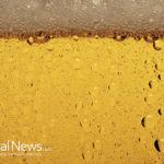 Can Beer Make You Smarter?