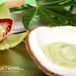 Study – Fats Found in Coconut Oil Boost Brain Function in Only One Dose
