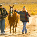 4 Ways to Bond with Your Horse Using Equine Therapy