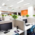 How Green Offices Benefit Employees