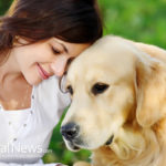 Boosting Your Dog's Immune System