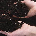 Composting Solutions For Every Situation