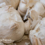 4 More Reasons Sprouted Garlic is Good For You Besides Fights Against Cancer