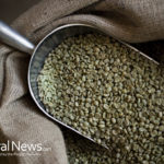 Are Green Coffee Beans the Perfect Weight Loss Superfood?