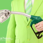 Is going green the path to a sturdy investment portfolio?