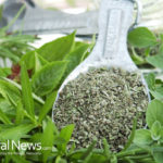 Oregano & Rosemary Control Blood Sugar Spike & Prevent Diabetes