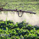 Breaking News: Air Raids, Chemical Weapons Hit California