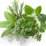 Herbs – Unlock Their Natural Chemicals for Home Remedies