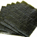 The Health Benefits of Nori (the Seaweed That Wraps Sushi)