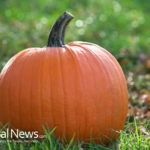 Pumpkins: Not Just For Halloween!