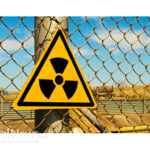 Mindful Survival ~ Rapt Attention in the Nuclear Age