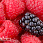 Ageless Antioxidants For Youthfulness — The 5 Best Antioxidant-rich Foods