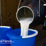 Raw Milk Sickens 45 People in Utah, Improper Cleansing of Udders Noted