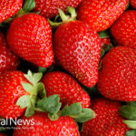 12 Collective Reason To Appreciate Nutrition-Packed Strawberries