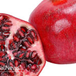 Top 7 Health Benefits of Pomegranate