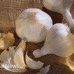 Garlic Fights Heart Disease, Cancer and Drug-Resistant Bacteria