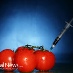 5 Reasons to Avoid GMO Food