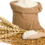 Flour Causes Colon Cancer