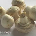Common mushrooms, anti-inflammation medicine
