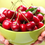 Tart Cherries Lower Blood Uric Acid Levels and Reduces Inflammation