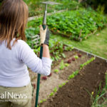 7 Ways Gardening Improves Your Health