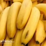 Are Bananas Radioactive?