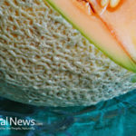 Cantaloupe: A Fresh, Delicious, and Healthy Summer Treat!