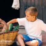 Juice, nourishing children's health and values
