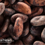 Raw Organic Cacao vs Cocoa: 5 Amazing Benefits of Making The Switch