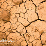 Red Alert: Engineered Drought Murdering California