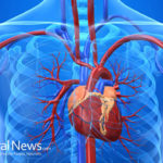 Cancer can produce a direct adverse effect on your heart