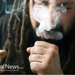 E-cigarette aerosols can increase risk of cancer