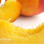 Peaches Force Cancer Cells To Commit Suicide
