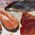 Fukushima gives me a reason not to eat any fish!!