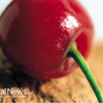 Heat Your Home with Cherry Pits – A Renewable, Biomass Alternative Fuel
