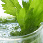 Liquid Chlorophyll: Anti Cancer, Antioxidant, Antiseptic And Anti-inflammatory Natural Agent