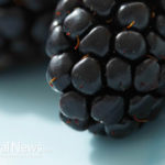 Berry Intake May Reduce Type 2 Diabetes Risk