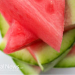 The Best Foods to Increase Kidney Function