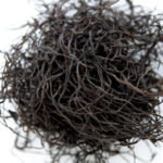 Arame: A Nutritious Seaweed Bursting with Iodine, Calcium and Iron