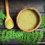 Amazing Moringa – The Miracle Healer