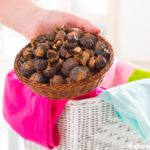 Soap Nuts: Washing Clothes Organically